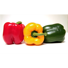 Medium Mixed Peppers Pack x4