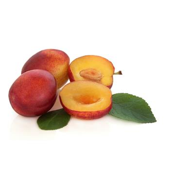 Plums Victoria Pack