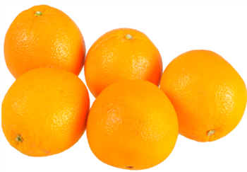 Oranges Medium 'Navel'