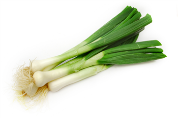 Spring Onion Bunch