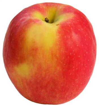 Apple Pink Lady (170g)