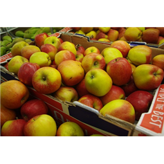 Apple Braeburn (170g)